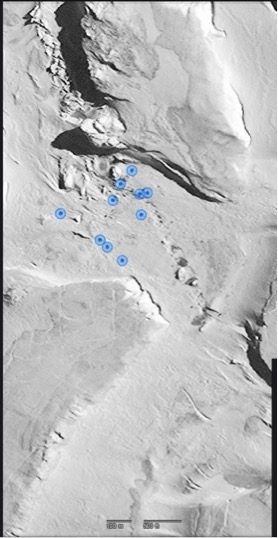 Figure 2. Pressure ridges on the sea ice and Weddell seals identified under the blue dots.