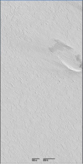 Figure 3. Snow-covered sea ice in McMurdo Sound. Notice there are no cracks in the ice!